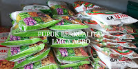 berkebun buah dan sayur, pupuk untuk tanaman, jual pupuk murah, lmga agro