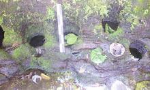 7 Tujuh Sumur Bidadari di Sidrap