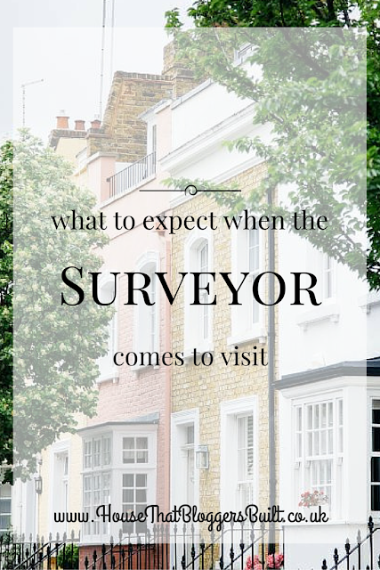 what to expect when a surveyor comes to visit
