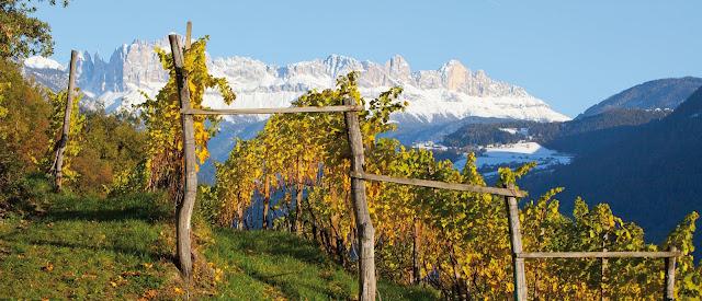 Nals Margreid Alto Adige winery