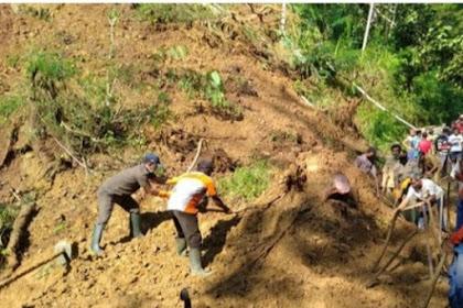Lereng Setinggi 50 Meter Ditrenggalek Longsor, Distribusi Susu Terlambat