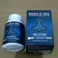 hammer of thor di jakarta jual hammer of thor di jakarta agen