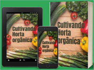 Aprenda cultivar hortaliças orgânicas em casa mesmo sendo iniciante