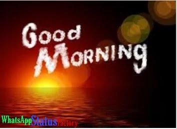 Best 250+ Good Morning Status Whatsapp - Quotes - Download