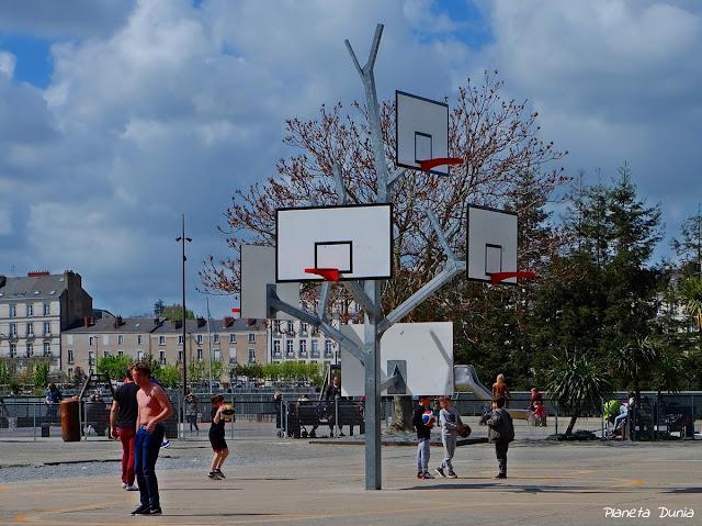 L'Arbre à Basket