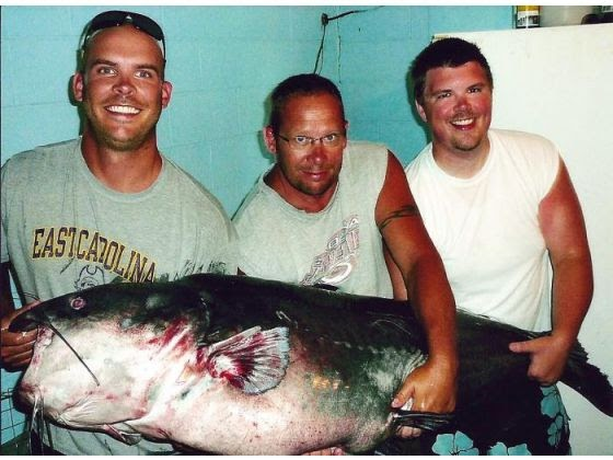 A View from the Beach: World Record Blue Catfish Caught