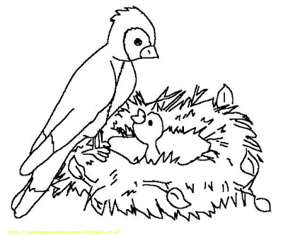 Gambar Mewarnai Burung - 9