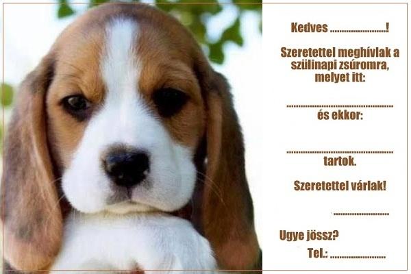 kutyusos szülinapi képek Zsúrda: Kutyás születésnapi meghívók kutyusos szülinapi képek