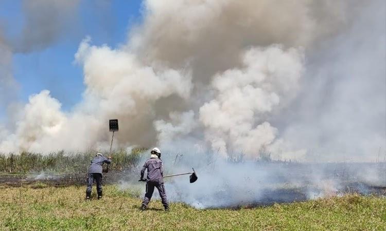 Bombeiros controlaram incêndio no Parque Lagoa das Bateias, em Vitória da Conquista