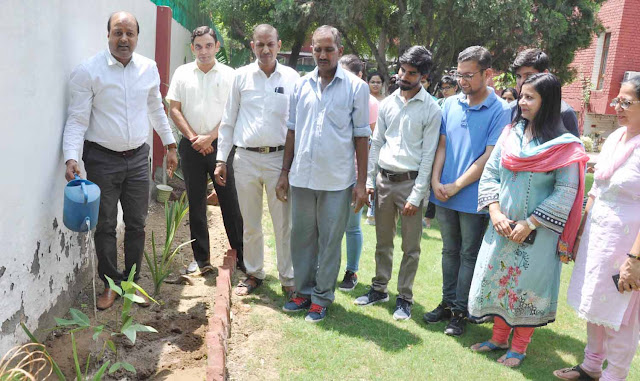 YMCA University Faridabad launched 'Adapt a Tree' campaign