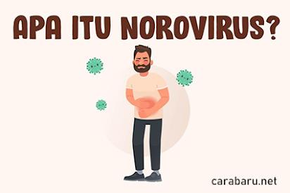 apa itu Norovirus