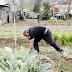 Autorizan en La Rioja el acceso a los huertos para autoconsumo dos días a la semana