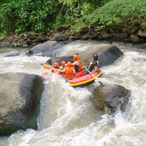 Tinuku Travel Nimanga river rafting in Minahasa has ripple grades 3-6 if lucky watch Tarsius tarsier and Macaca nigra
