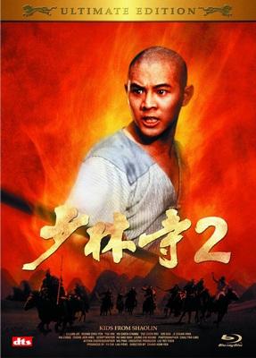 The Shaolin Temple (1982) เสี้ยวลิ้มยี่ ภาค 2