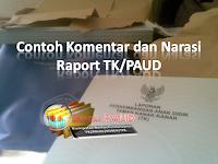 Contoh Komentar dan Narasi Raport TK/PAUD
