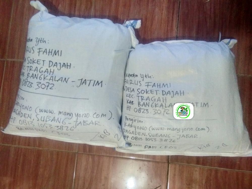 Benih Padi yang dibeli FAIRUS FAHMI Bangkalan, Jatim.   (Setelah packing karung).