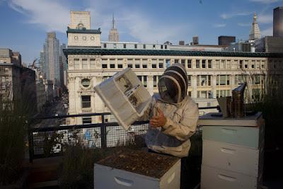 Ένα μπαλκόνι για τις μέλισσες