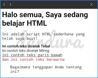 Contoh Script HTML Website Sederhana