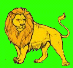 Essay on Lion in Punjabi | 10 Lines on Lion