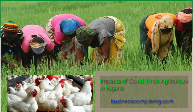 """alt: = """"picture showing women working on rice farm, and poultry farm"""""""