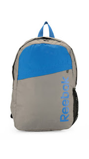 Reebok Blue And Grey Polyester Backpack At Rs.480
