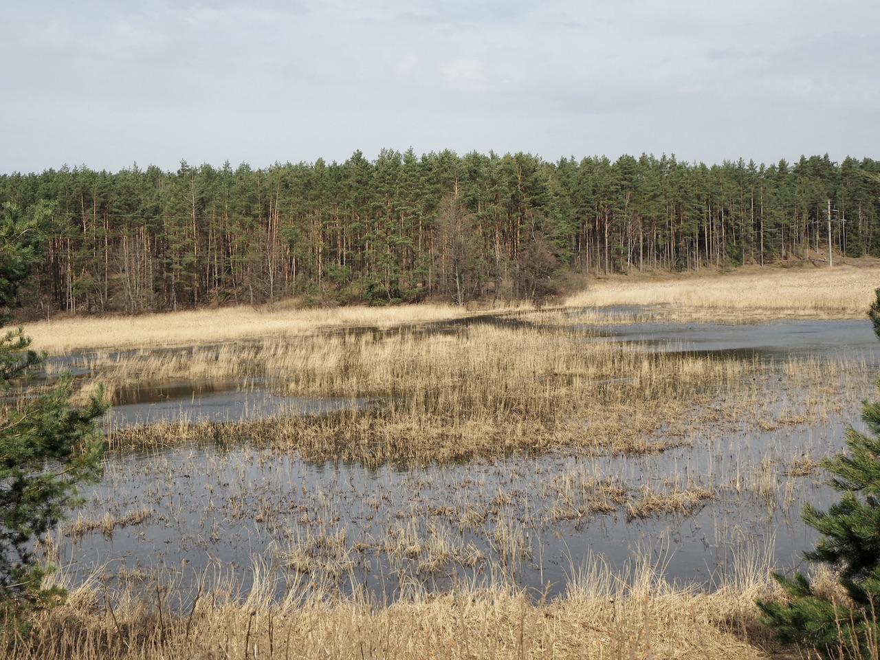Senųjų kaimų takas ties Krempliais tvenkinys