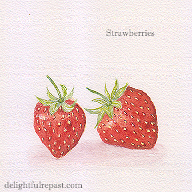 Fresh Strawberry Scones (this photo, my watercolor sketch of two strawberries) / www.delightfulrepast.com