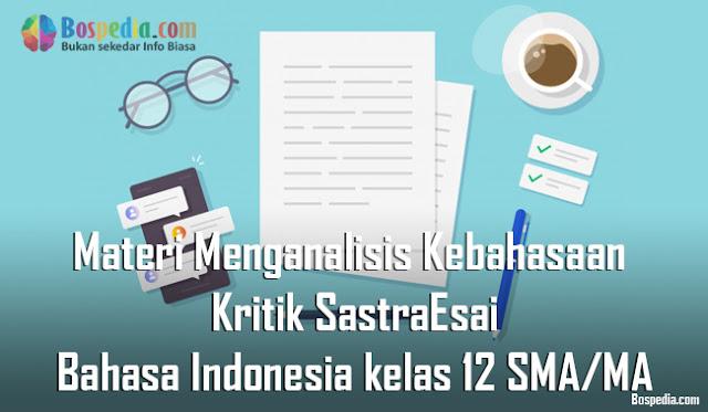 Materi Menganalisis Kebahasaan Kritik Sastra dan Esai Mapel Bahasa Indonesia kelas 12 SMA/MA