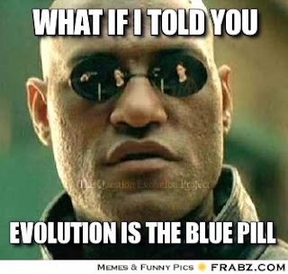 Some people define reality as atheistic naturalism, then ridicule those of us who believe reality comes from God. They took the blue pill, not us.