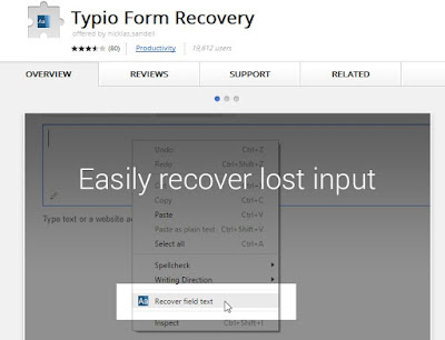 Google Chrome, Recover Lost Text, Data