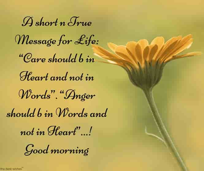a gud morning sms with yellow flower