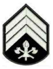 Resultado de imagem para sargentos cbmmg