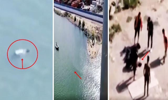 تونس: بالفيديو علي المباشر: شاب ينتحر من فوق قنطرة رادس ومواطنون يخرجون جثته