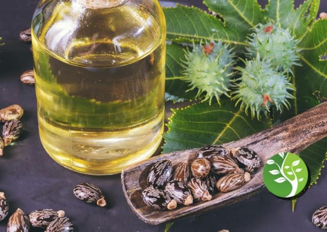 cómo usar el aceite de ricino para su belleza