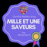 certifié meilleur blog par maisonae