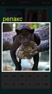 на дереве лежит пантера и осуществляет релакс 667 слов 7 уровень
