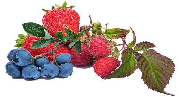 Blueberry dan Raspberry