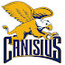 Canisius swimming and diving splits With Colgate