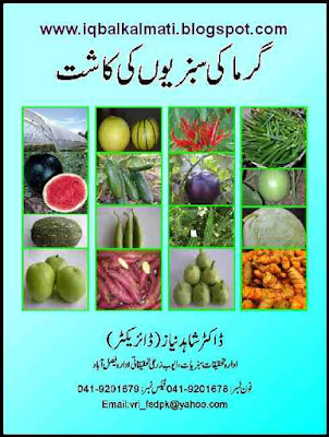 Vegetable Farming Summer Urdu