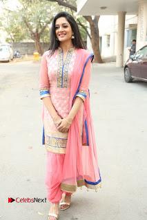Actress Vimala Raman Stills in Beautiful Pink Salwar Kameez at (ONV) Om Namo Venkatesaya Press Meet  0253.JPG
