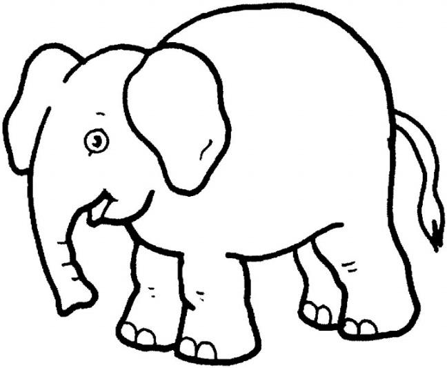 Binatang Drawing Hitam Putih Gambar Gajah Wwwimagenesmicom