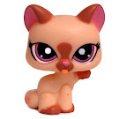 Littlest Pet Shop 3-pack Scenery Siamese Cat (#1626) Pet