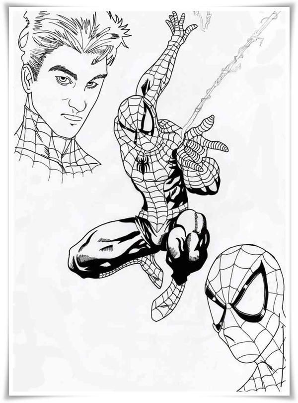 Malvorlagen Ausmalbilder Spiderman: Ausmalbilder Zum Ausdrucken: Spiderman Ausmalbilder