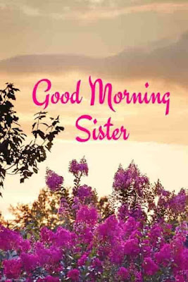 Good Morning Quotes for Sisters and Brothers