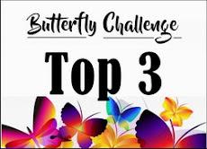 Butterfly 172