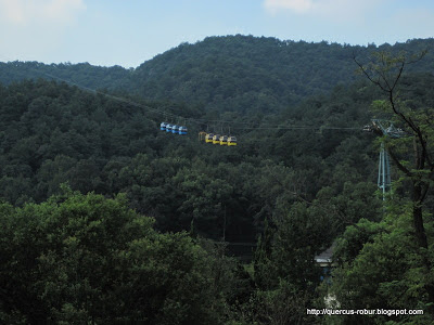 Cableway in Lingyin Temple - Hangzhou