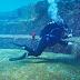 4 Area Diving di Okinawa Jepang Bisa di Kunjungi Saat di Jepang