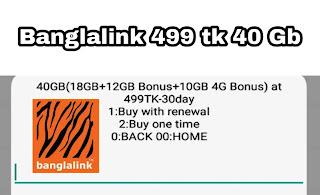 Banglalink monthly internet pack, bl 40 gb offer,  bl monthly pack,