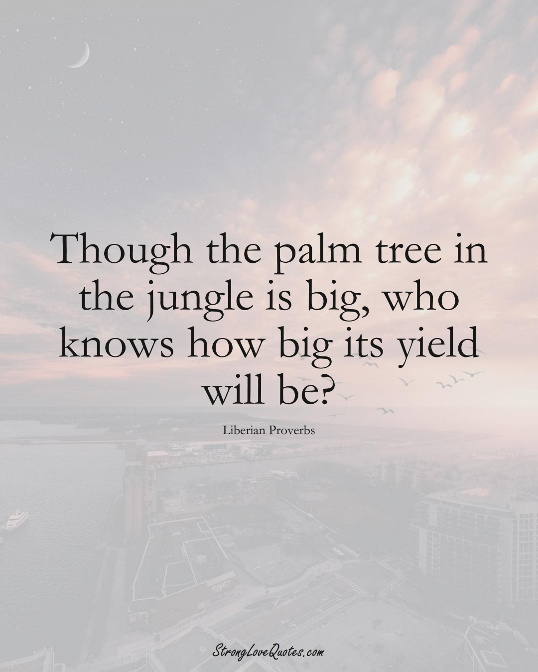 Though the palm tree in the jungle is big, who knows how big its yield will be? (Liberian Sayings);  #AfricanSayings