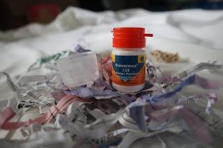 Konvermex Obat Cacing Keluarga